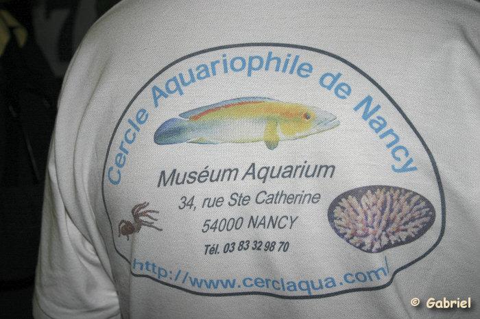 Cercle Aquariophile de Nancy