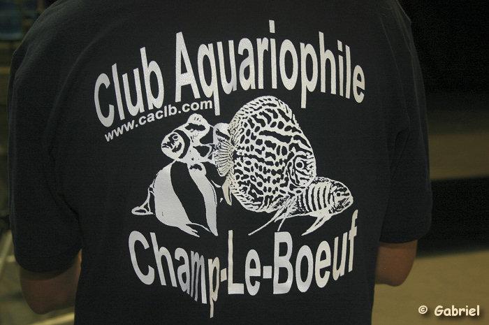 Club Aquariophile de Champs-le-Boeuf