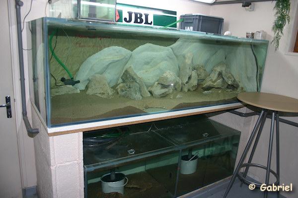 Fishroom de Gabriel le 04-11-2012 - Les aquariums du petit support maçonné