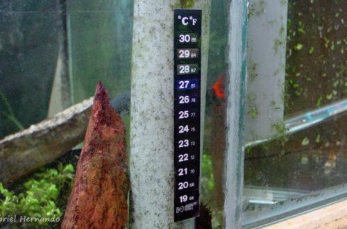 L'inesthétique thermomètre autocollant