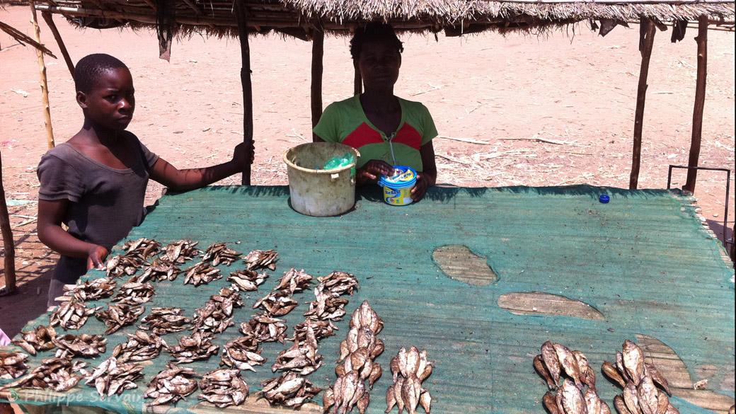 Stand de vente de poisson (pour l'alimentation), à Nkopola